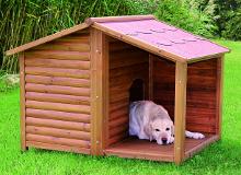 De grootste en goedkoopste hondenhokken leverancier van belgie - Buiten terras model ...